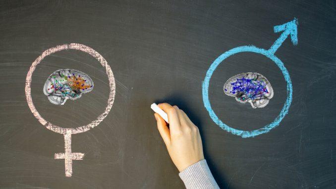 Differenze cerebrali genetiche fra uomini e donne