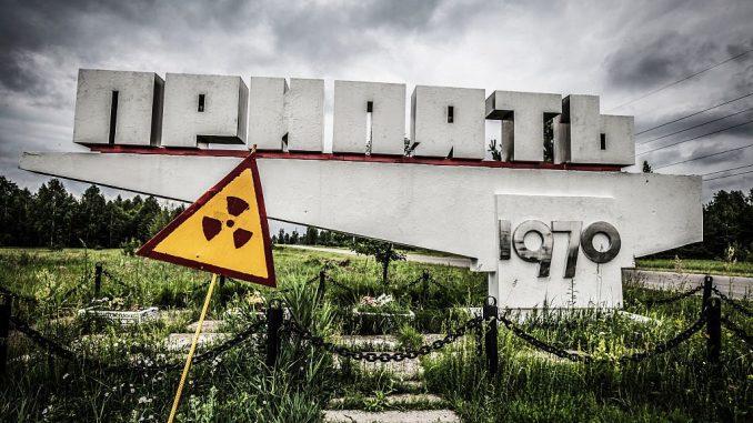 Funghi neri di Chernobyl assorbono le radiazioni Gamma