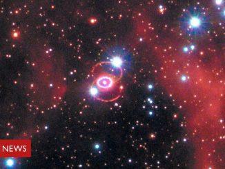 La supernova 1987A nasconde una giovane stella di neutroni