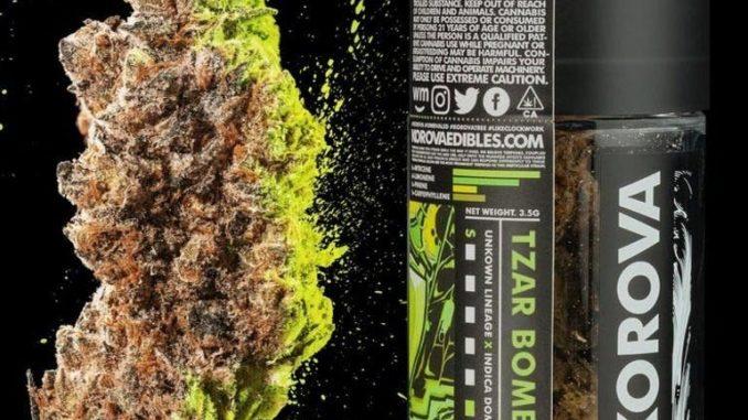 Su internet cannabis ad altissimo valore di Thc