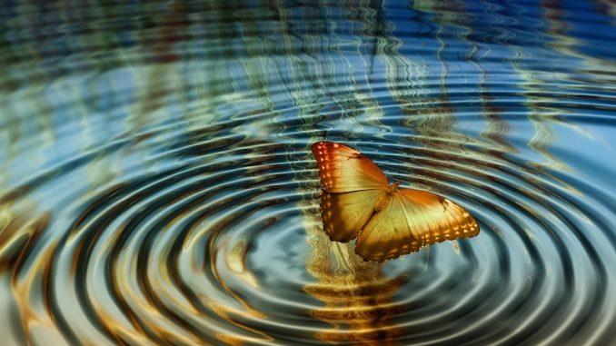 Ma l'effetto farfalla esiste? Funziona?