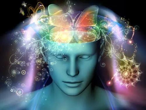 La neurogenesi cerebrale avviene anche in età adulta