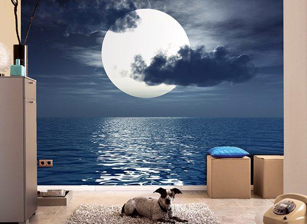 Quest'anno ad Halloween splenderà una rara Luna blu
