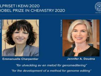 L'editing del genoma ha vinto il premio Nobel per la Chimica 2020