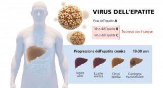 Il virus dell'eptatite C
