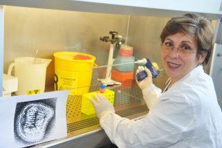 """Per la direttrice del laboratorio di virologia dell'Istituto Spallanzani di Roma, la microbiologa Maria Rosaria Capobianchi, il vaccino non sarà la soluzione a tutti i mali e bisognerà evitare il """"liberi tutti"""", come quello dell'estate, che ha causato il disastro di oggi"""