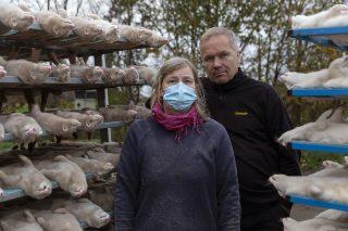 Gli allevatori di visoni Holger e Ruth Rønnow, tra i numerosi esemplari che hanno dovuto abbattere a causa del rischio di contagi da coronavirus, Herning, Danimarca (Ole Jensen/Getty Images)