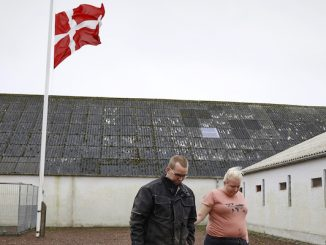 Visoni e rischio Coronavirus allarme dalla Danimarca