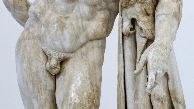 Stranezze genitali del pene nel mondo animale