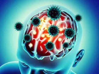 Trovata anche nel cervello la proteina spike del coronavirus