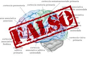 Immagine concettuale, che rappresenta il cervello