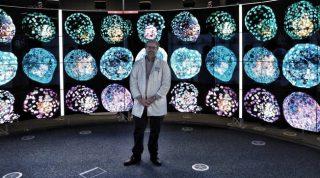 Primi embrioni umani sintetici ottenuti da cellule modificate