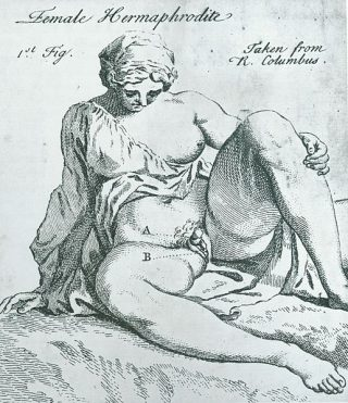 Female_Hermaphrodite_(George_Arnauld,_1750)