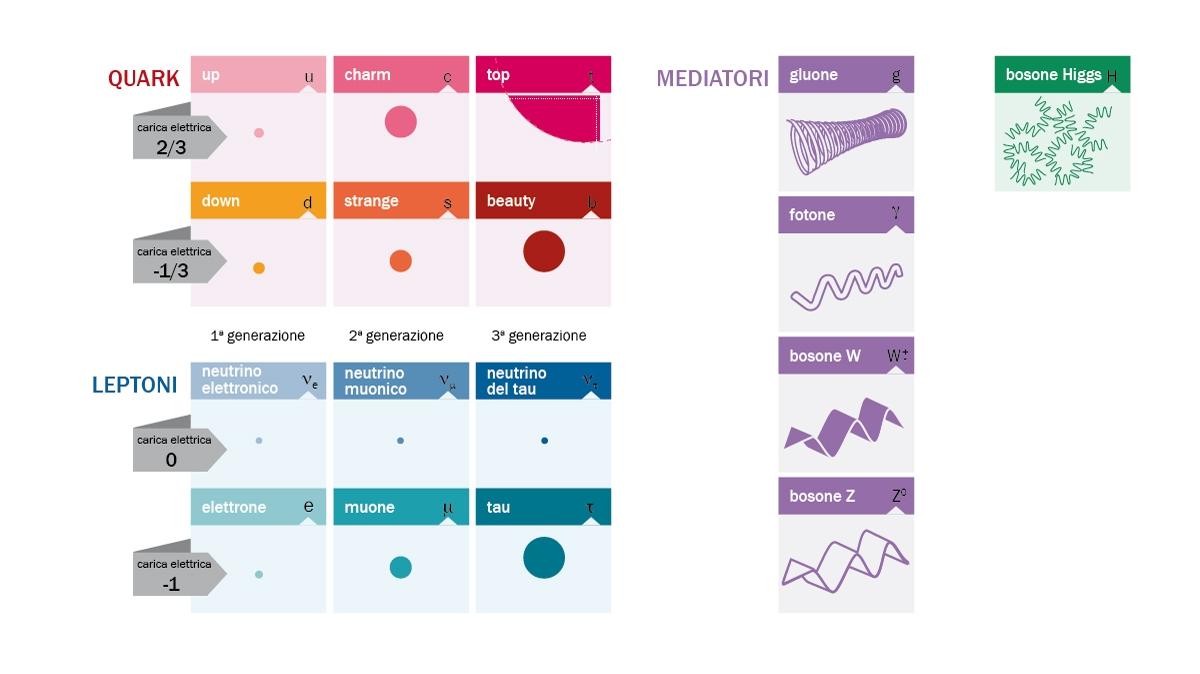 Rappresentazione modello standard© Asimmetrie