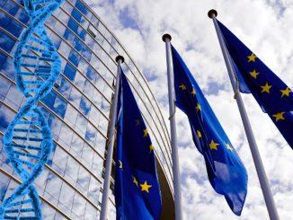 Europa, è stata consentita l'ibridazione genomica Ngt