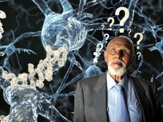 Proteina che blocca l'invecchiamento cerebrale